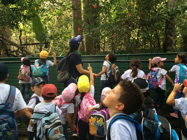 IPICIM Gira Preescolar Zoo Ave