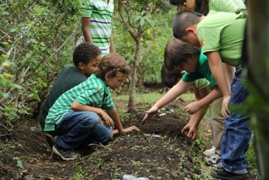 Aula verde y educación ambiental