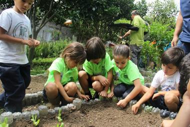 Educación ambiental en el kinder